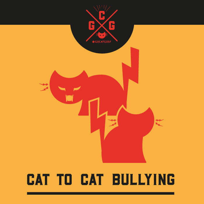 Cat to Cat Bullying
