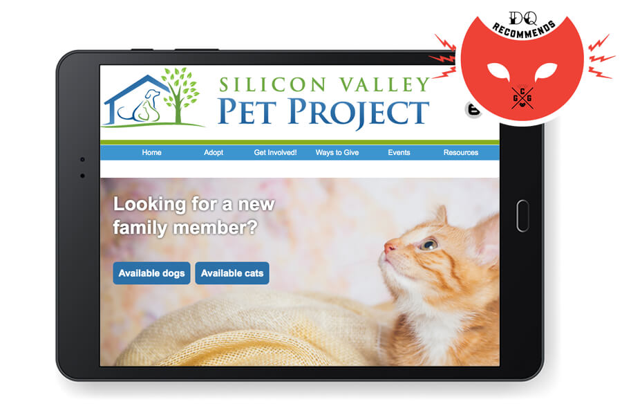 Silicon Valley Pet Project