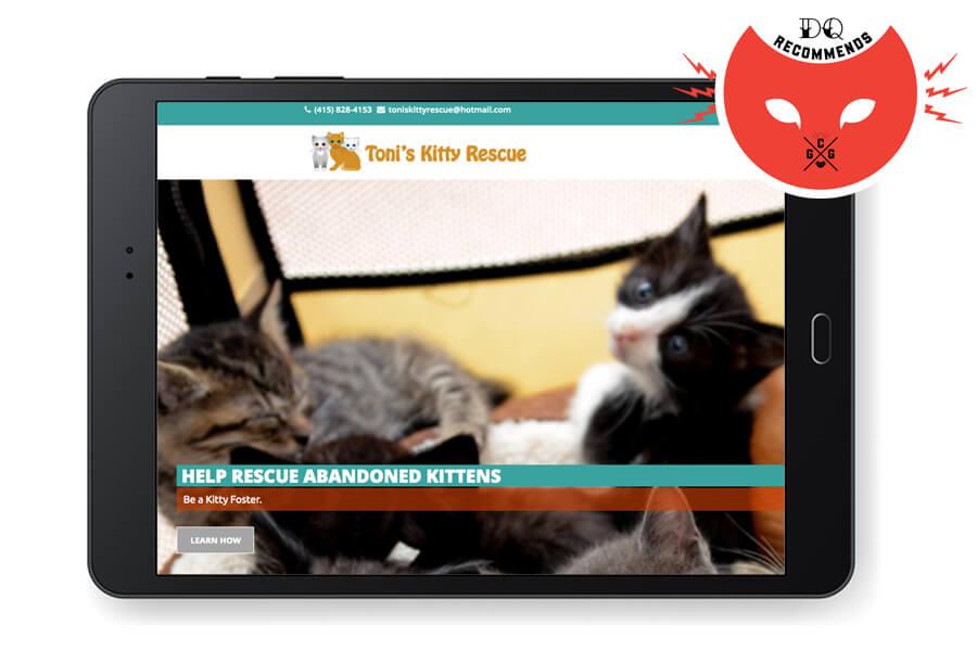 Tonis Kitty Rescue